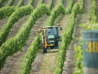 80Hp Vineyard Tractor